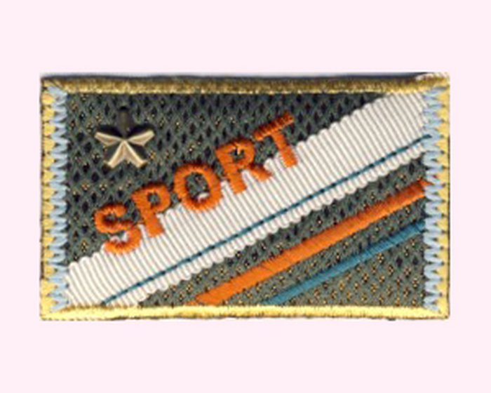 Applikation Banner Sport, olive-orange