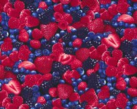 Patchworkstoff FRUIT BERRY, Beeren-Mix, rot-dunkles pflaume