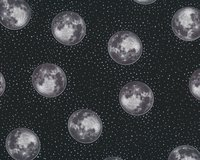Metallic-Patchworkstoff FULL MOON, Vollmond, schwarz-silber metallic