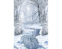 60-cm-Panel Patchworkstoff WINTER HIKE,...